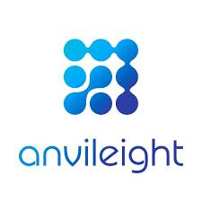 AnvilEight Software Development