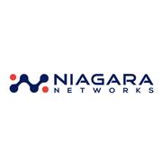 Niagara Visibility Controller