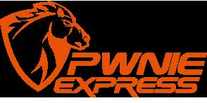 Pwnie Express Pwn Pulse