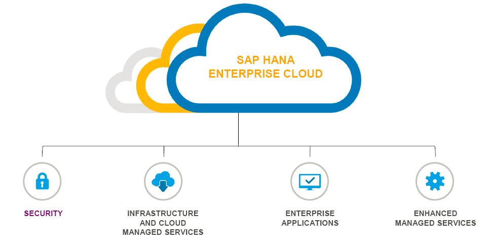 SAP HANA Enterprise Cloud