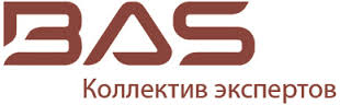 BAS (Business Applications Solutions) logo