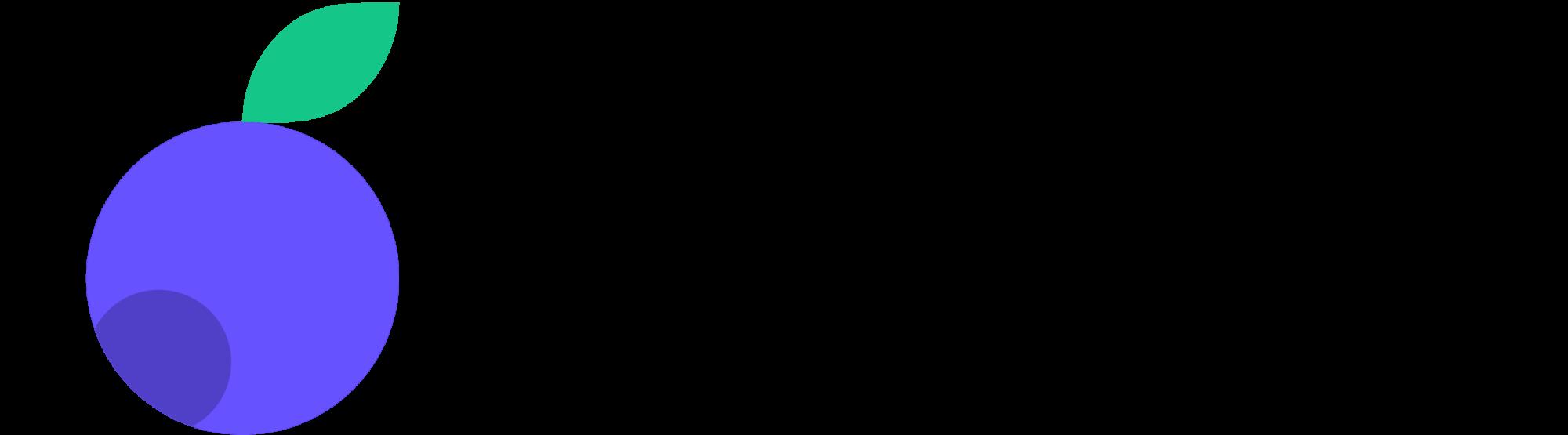Bilberrry logo