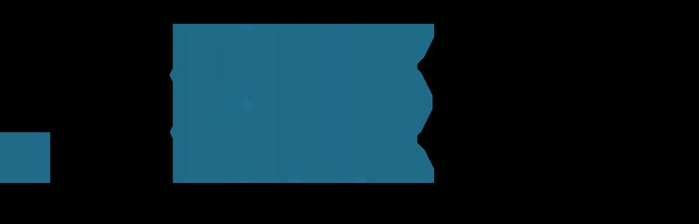 BlueRISC logo