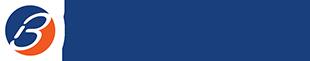 Bricata logo