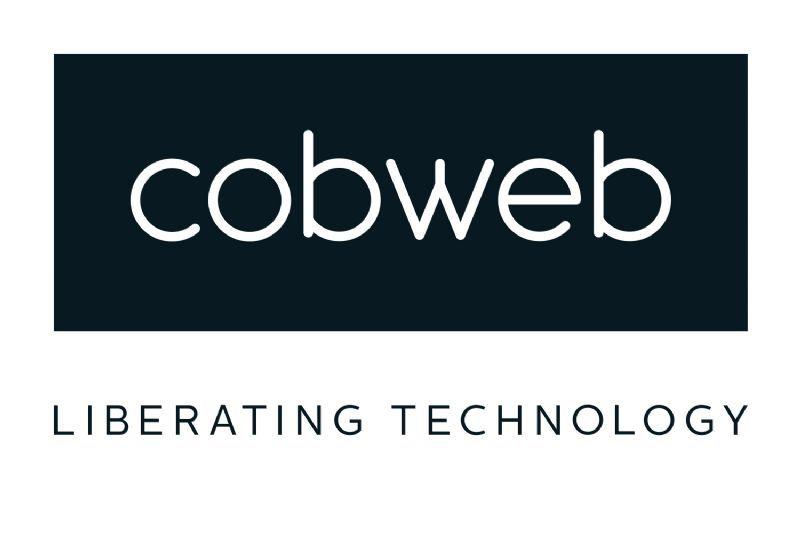 Cobweb logo