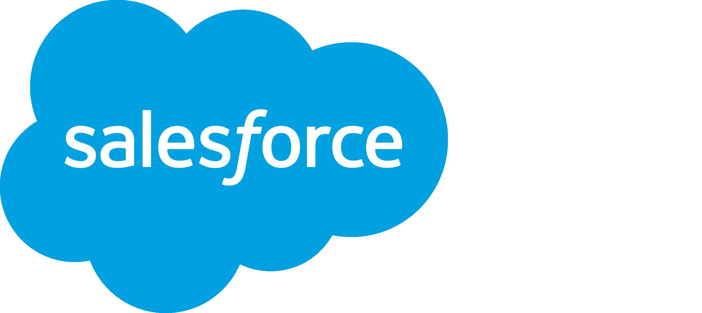 Salesforce.com (User) logo