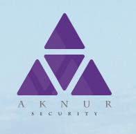 Aknur logo