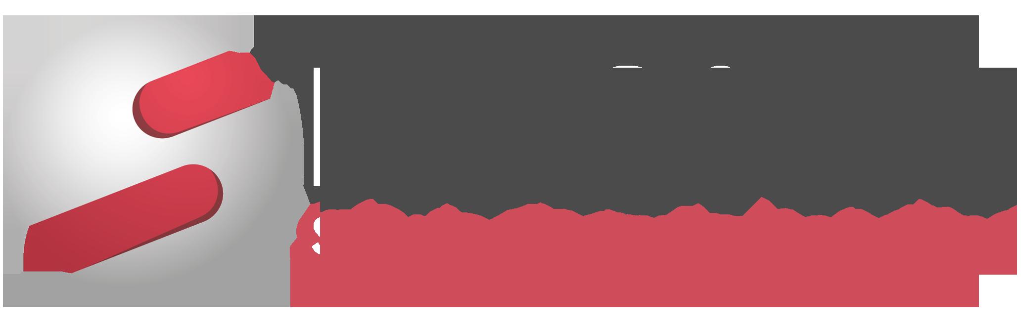 NetSfere logo